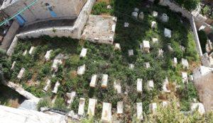 Dajani Cemetery